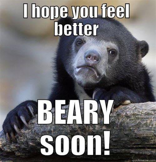 get well beary soon meme