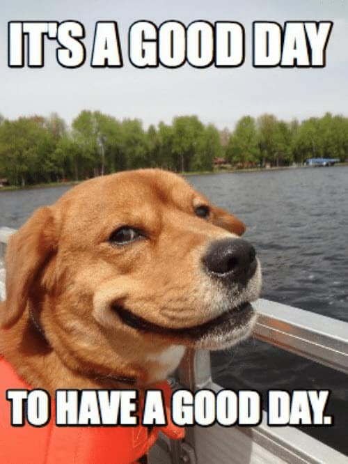 have a good day to have a good day meme -