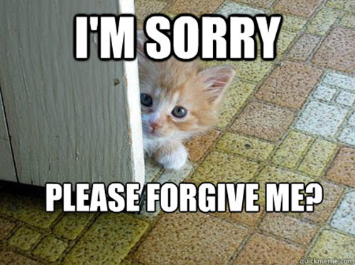 im sorry please forgive me meme
