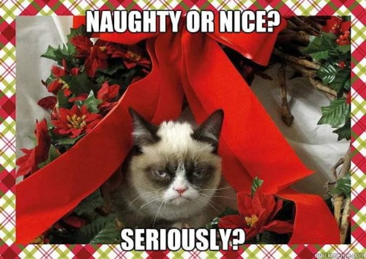 naughty or nice merry christmas memes