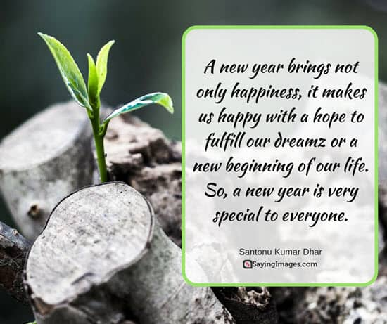 new years resolution quotes