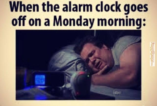 25 Funny Monday Memes To Start Your Week Right
