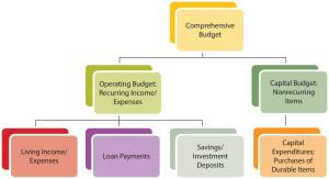 Financial Plans: Budgets