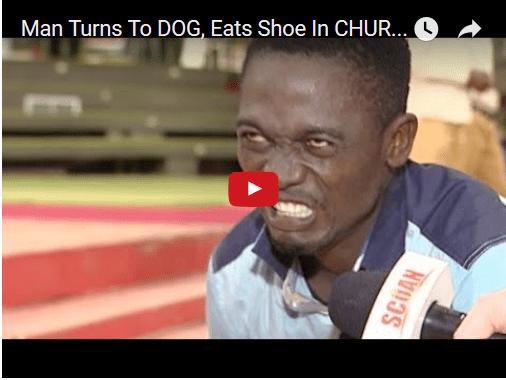 man turns to dog
