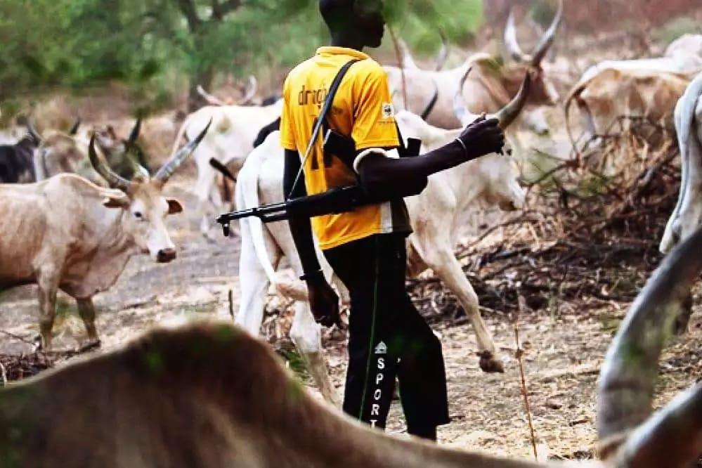 76 Enugu villagers granted bail after Fulani herdsmen clash