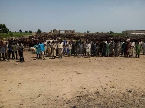 Photos: Nigerian Army Rescues Boko Haram Captives in Dalakalari