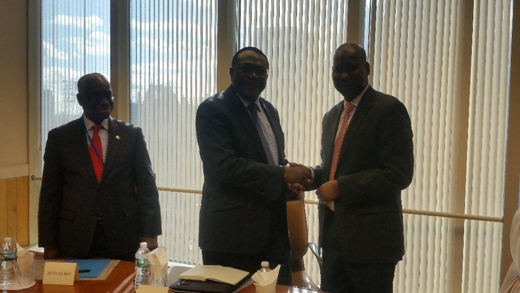 Nigeria Replaces Togo As Chairman ECOWAS At UN