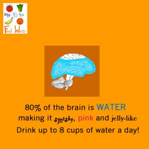 Your Brain is Water