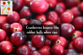 cranberries.ripe.bounce.ball.saynotofoodwaste.sustainble.health.share.good.happy.nice