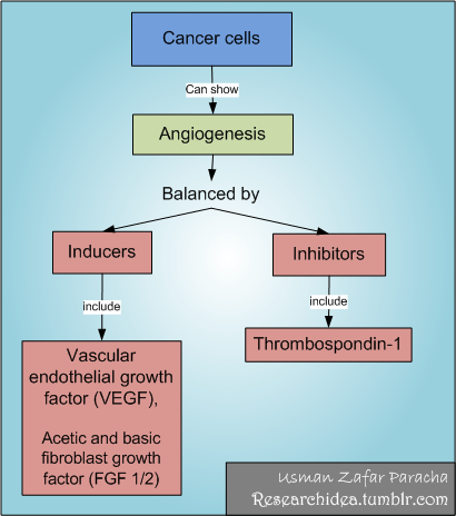 Six distinguishing features of Cancer cells