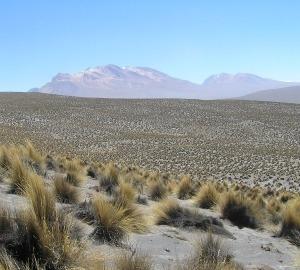 Dryland in Peru