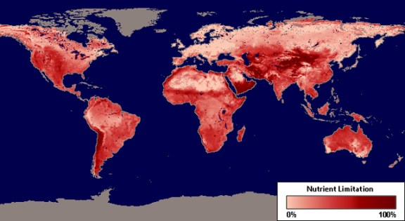 Global map depicting nutrient limitation affecting plant productivity