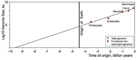 Semilog plot for the origin of life (Credit: arXiv:1304.3381 [physics.gen-ph])