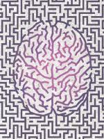 Brain maze (Credit: Grandeduc/Shutterstock)