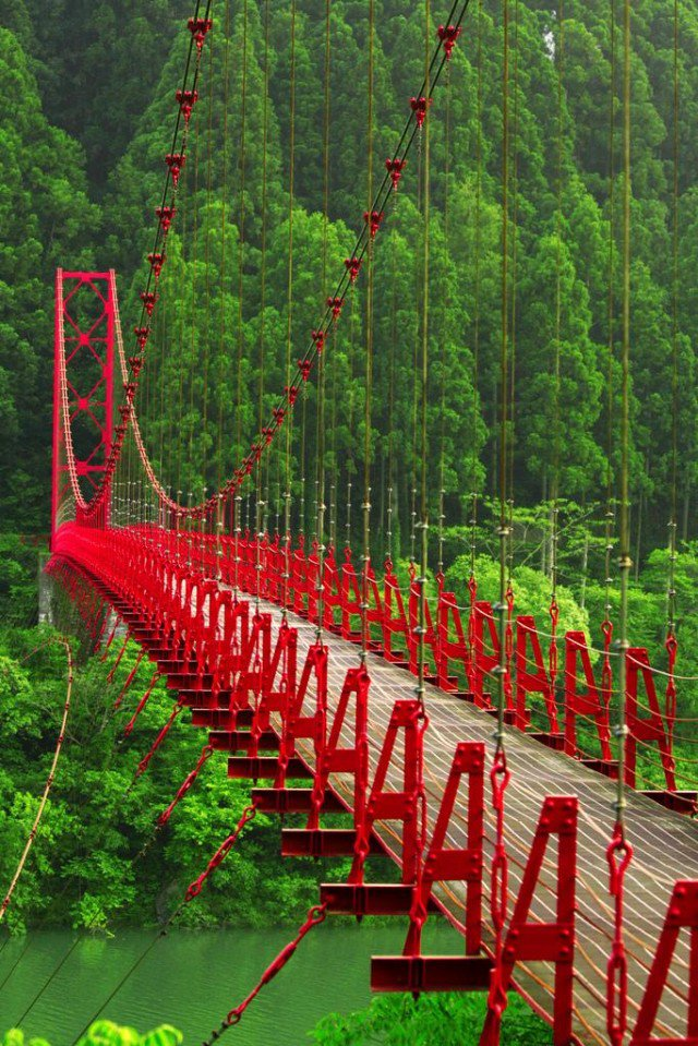 Red Bridge, Japan (Source: Pinterest)