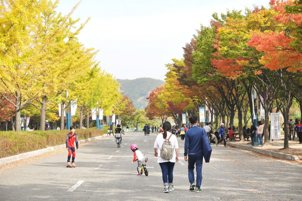 Travel Photographer | Autumn Incheon Grand Park (인천대공원) South Korea
