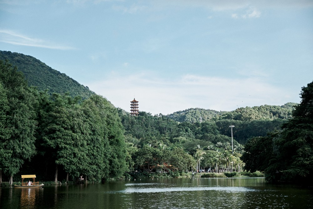 Shenzhen Fairy Lake Botanical Garden