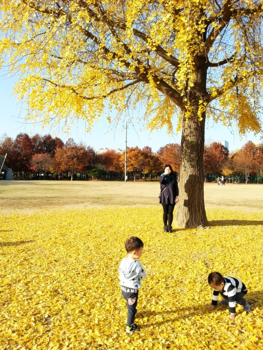 서울숲 (Seoul Forest)