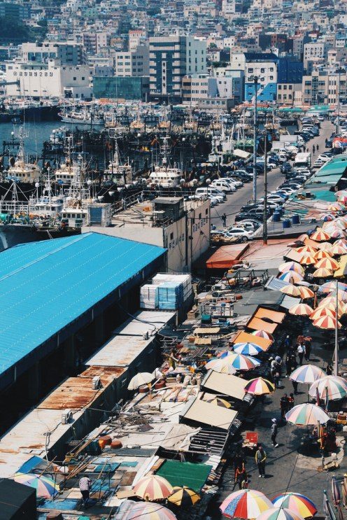 Busan Jagalchi Market (부산 자갈치시장)