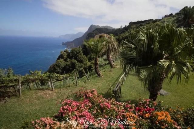 Hôtel de l'île de Madère avec un beau jardin - Quinta de Furao Madeira Review - Hotele z pięknym ogrodem na Maderze Hotel Quinta do Furao Recenzje, Opinie, Zdjęcia