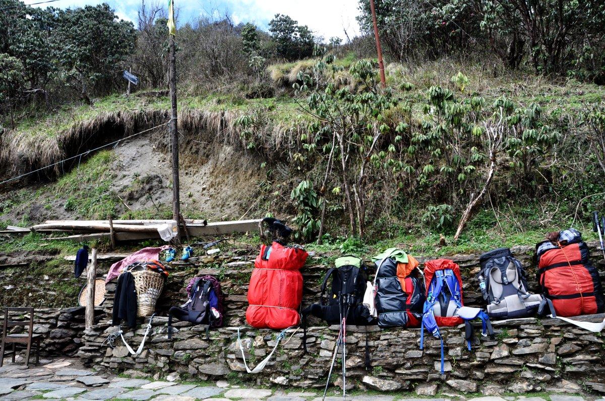 Porter trekking in Nepal