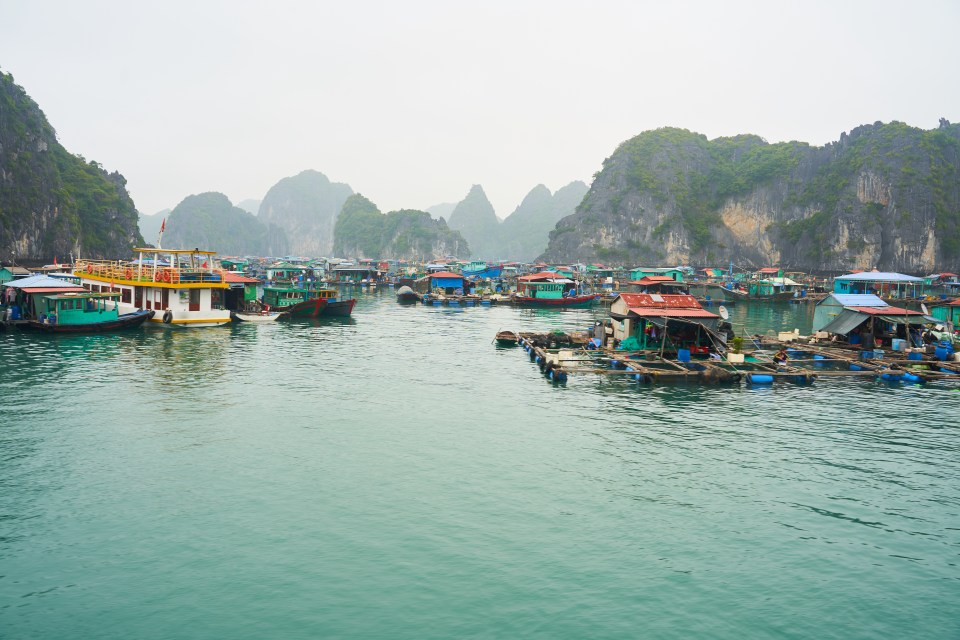 Floating Village in the bay of Cat Ba Island