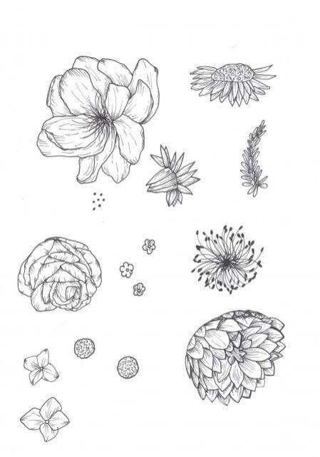 floral drawings