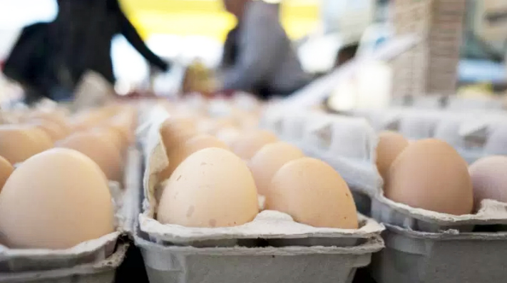 Egg Recall photo