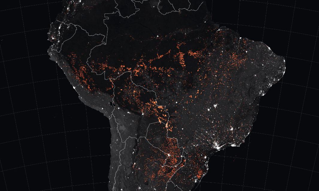 Rain forest inferno