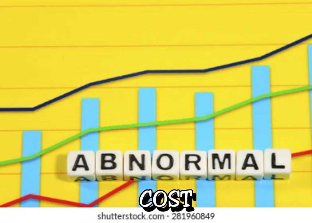 Meaning of Abnormal Cost and Key Explanations