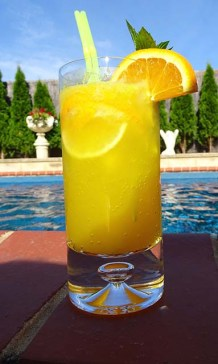 Zingy Citrus Mocktail - Image 1