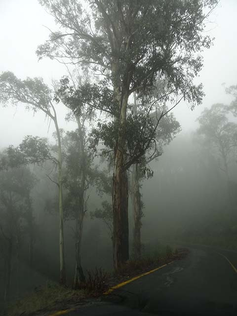 C - Homeward bound - awful weather, beautiful scenery