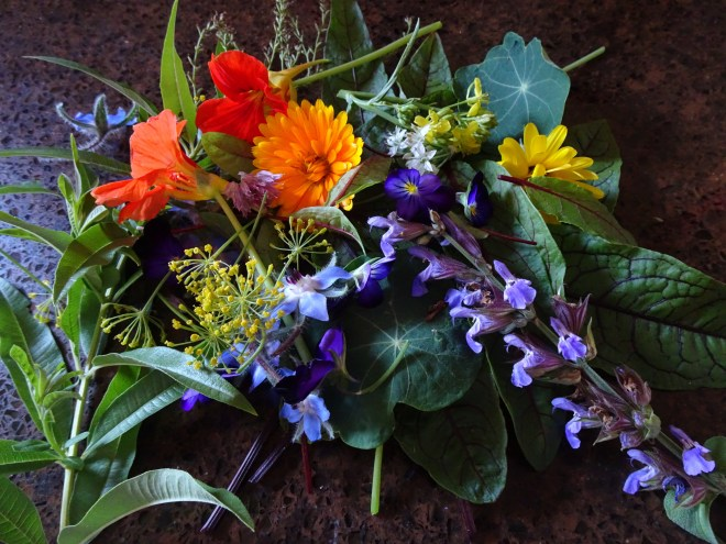 Edible Flowers from our vegetable garden