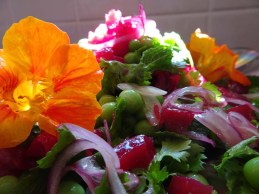 Beetroot, pea and fresh herb salad -3