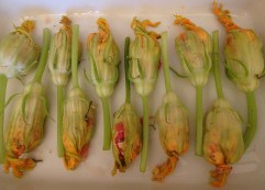 Mozarella Stuffed Zucchini Flowers - 1