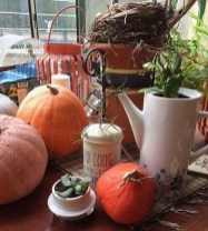 Pumpkins from the garden -1