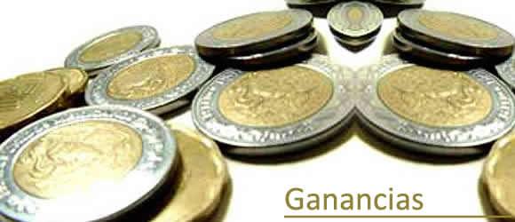 impuesto a las ganancias www.sbasualdo.com.ar