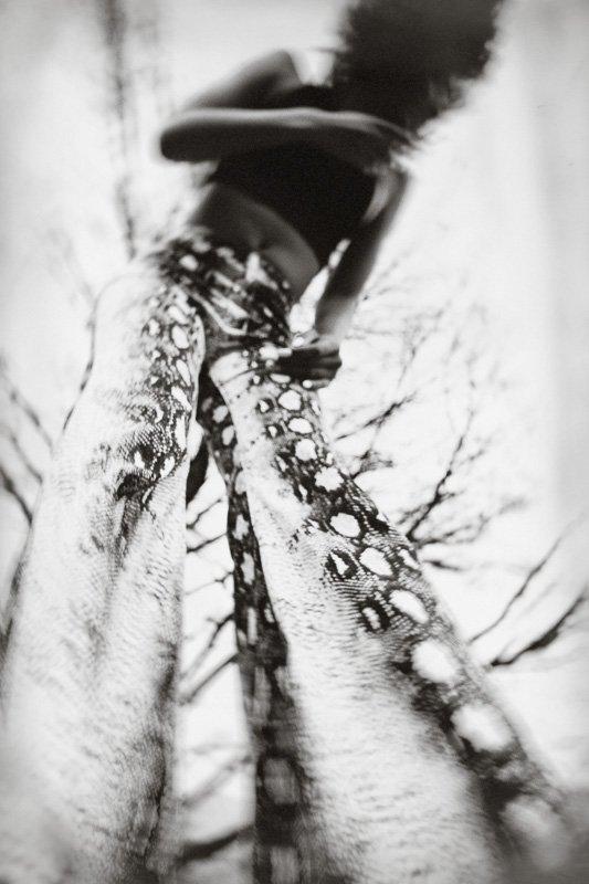 Untitled –  Isabella Rain Faulkner