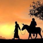 Jesus, the Sojourning Savior