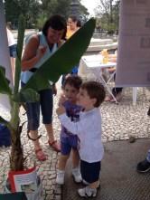 Crianças encantadas com réplicas de Ectophylla alba