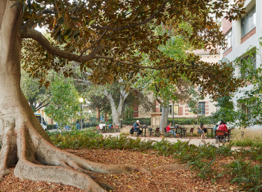 UCLA Math Sciences