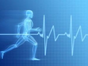heart rate zone skelaton