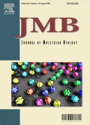 Cover of the Journal of Molecular Biology, 2006, Vol 361(4)