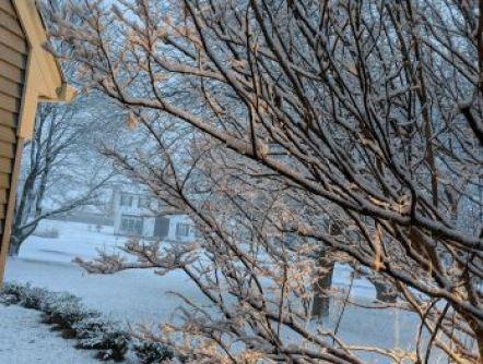 snow surprise