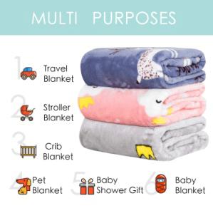 Customizable Digital Print Designer Fancy Minky Blankets Manufacturers Wholesale