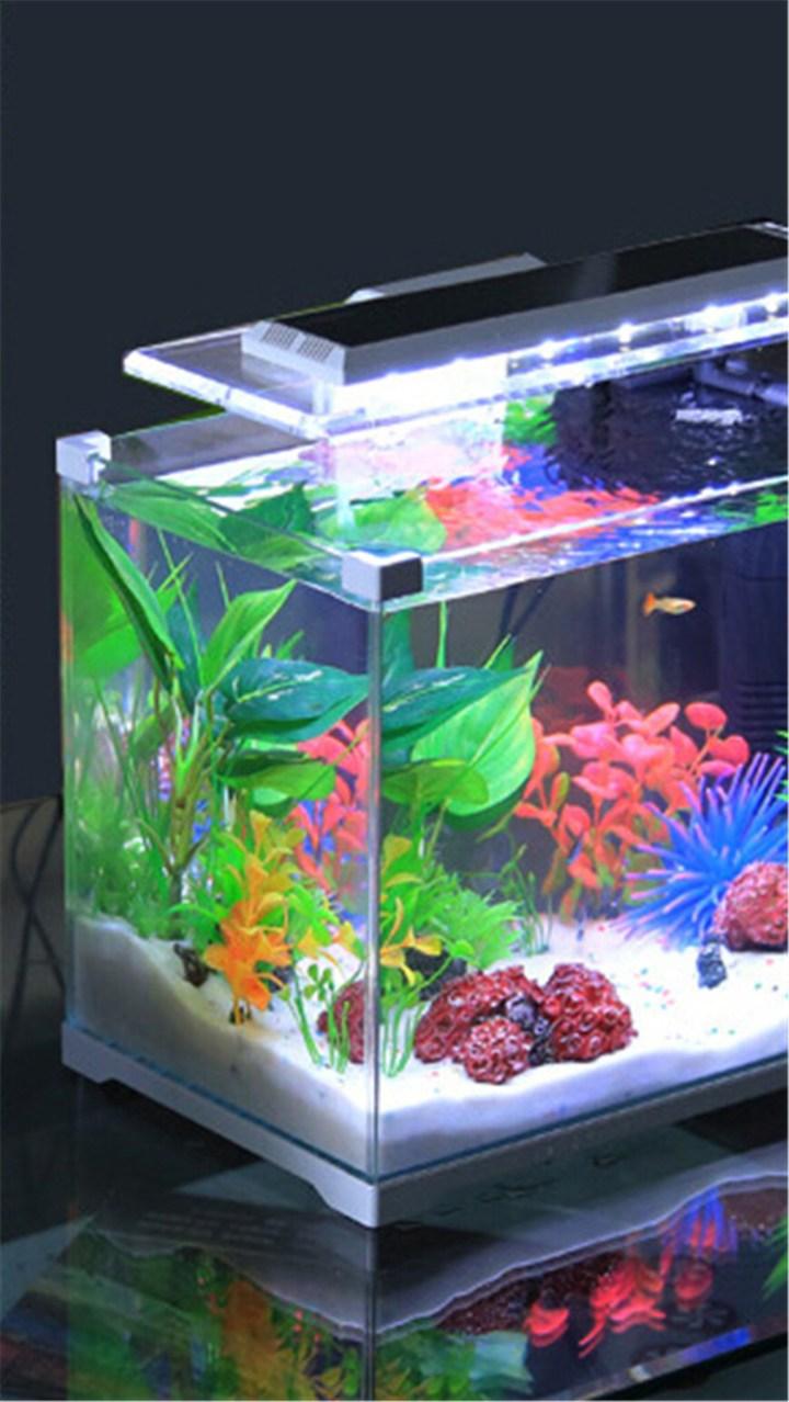 Usb Mini Akuarium Aquarium Ikan Life Hiasan Meja Kantor Rumah Soliter Cupang Kaca Sunsun Besi Rendah Kubus Taman Tangki