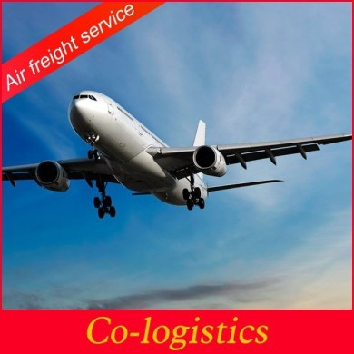 freight forwarding agent to san francisco Source quality freight     shanghai international freight forwarding agent to San Francisco