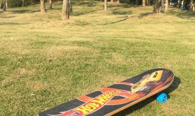 Custom Wood Skateboards | Wooden Thing