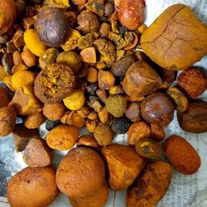 Image result for ox gallstones price per gram