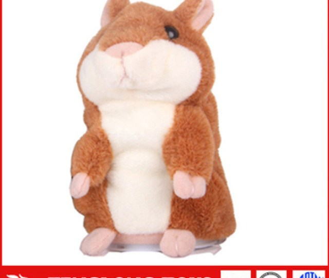 Child Funny Animal X Hamster With Custom Made Gift Box